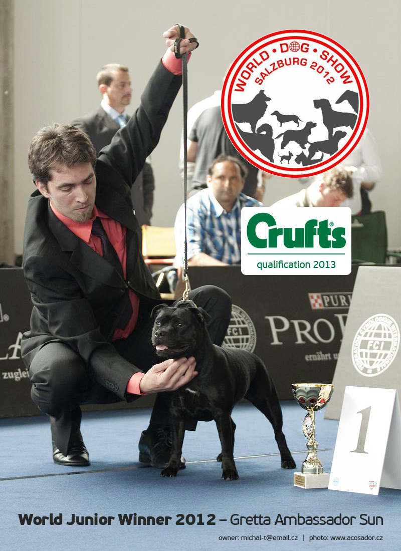 JUNIOR WORLD WINNER 2012 (Salzburg, Austria) – JCh. & Club JCh. Gretta Ambassador Sun JWW (Buffy)