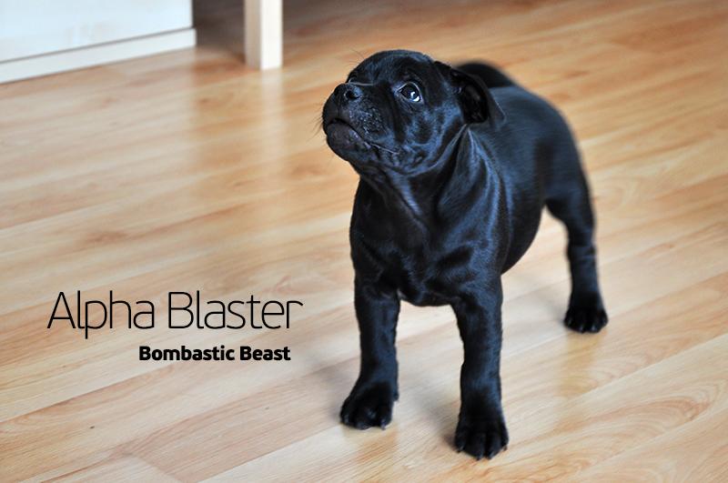 Alpha Blaster Bombastic Beast